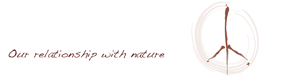 Our relationship with nature