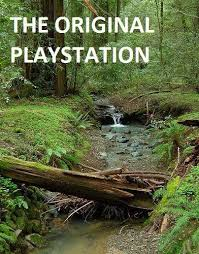 picture of creek with the slogan 'Original Playstation'
