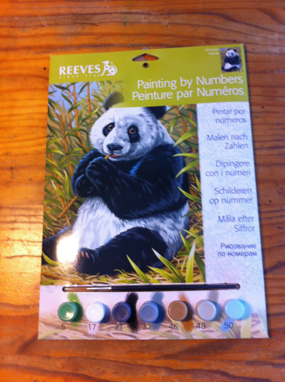 Paint by numbers kit of panda eating bamboo