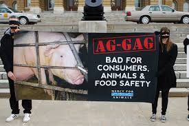 Activists protest Ag Gag laws