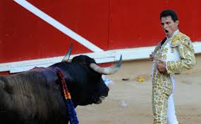 man taunts bull