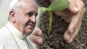 http://paxchristiusa.org/2015/02/11/reflection-anticipating-the-attacks-on-pope-francis-and-his-environmental-encyclical/