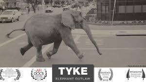 Tyke B&W poster