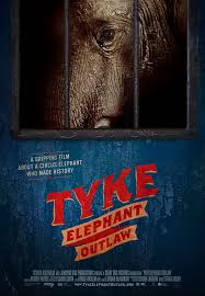 Tyke poster