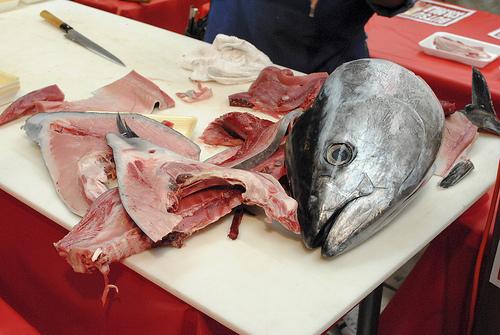 http://darindines.com/2012/04/22/bluefin-tuna/