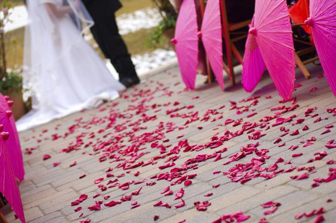 http://www.greenbrideguide.com/blog/diy-rose-petal-confetti-your-wedding