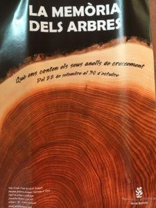poster for La Memória dels arbres