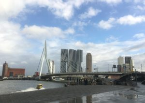 Rotterdam harbour reminds me of Hong Kong