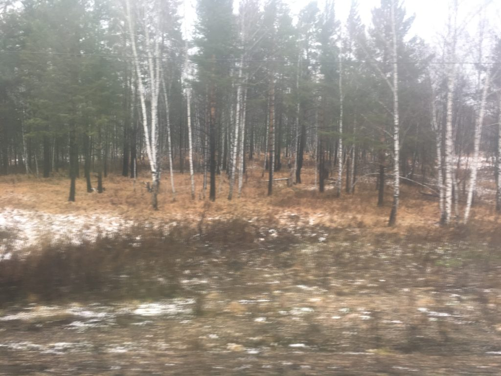 Barabinsk - call that snow?
