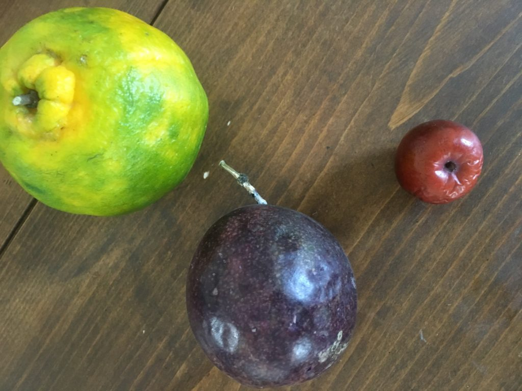 Three common Chinese fruit: Mandarin, passionfruit and hawthorn