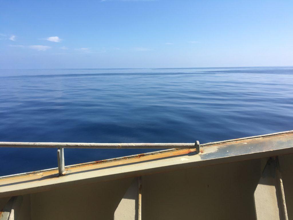 CC Coral calm deck day