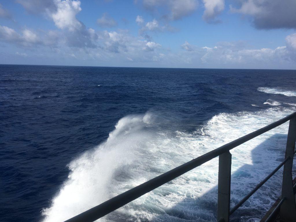 Fresh air CC Coral Tasman Sea