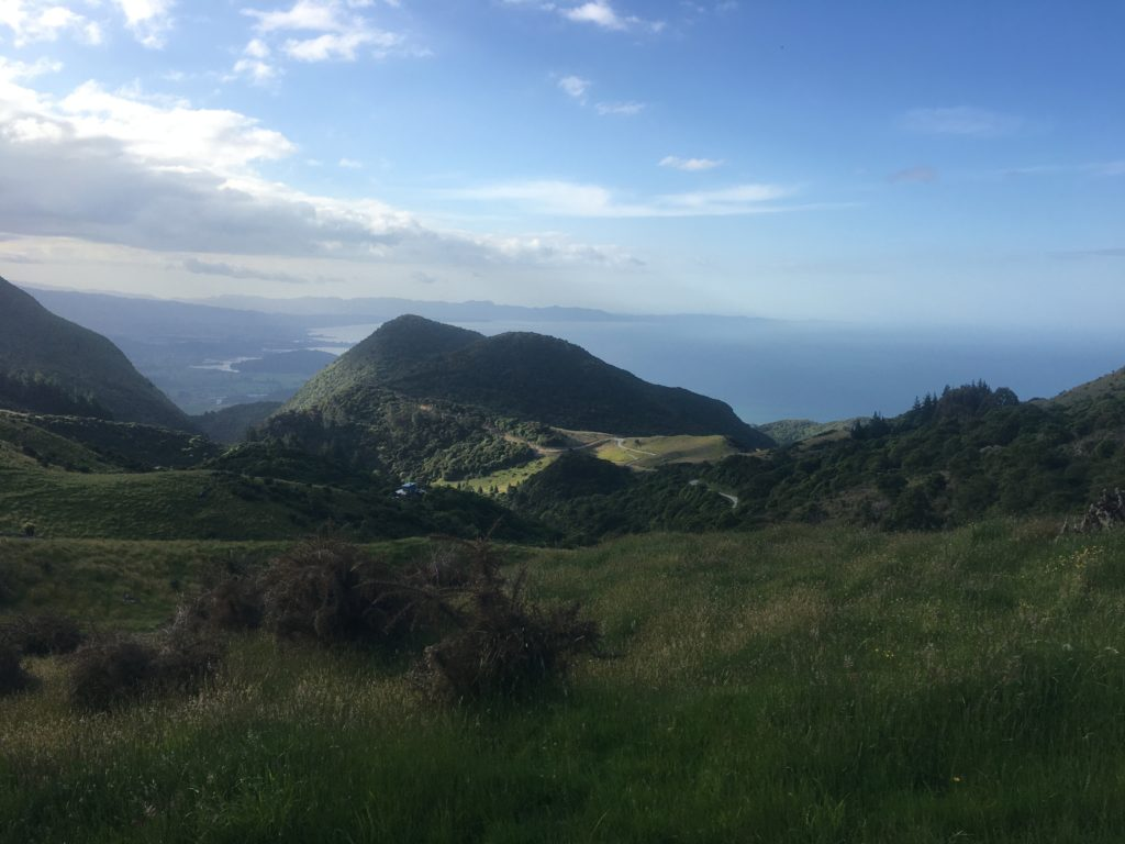 Up in the hills above Takaka
