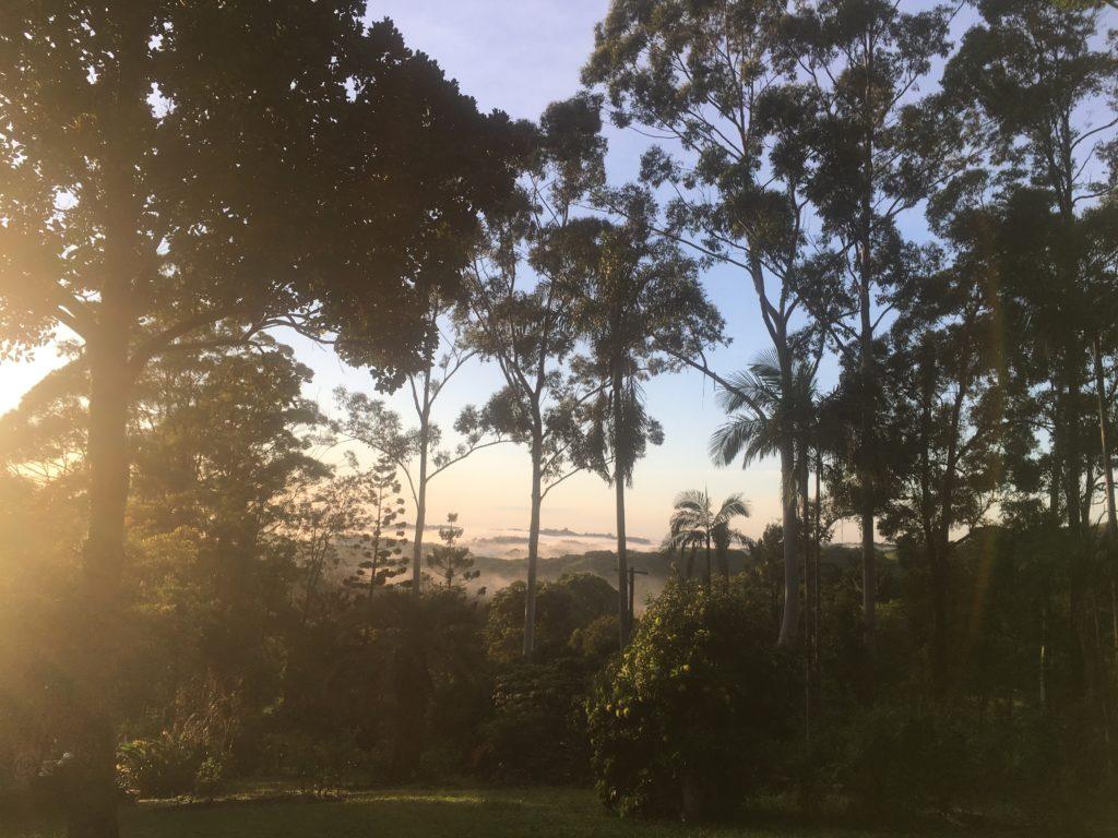 View from friend's property near Mullimbimby